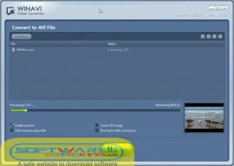 Winavi Video Converter 11 full crack