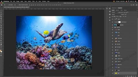 Adobe Photoshop CC v2020 latest software